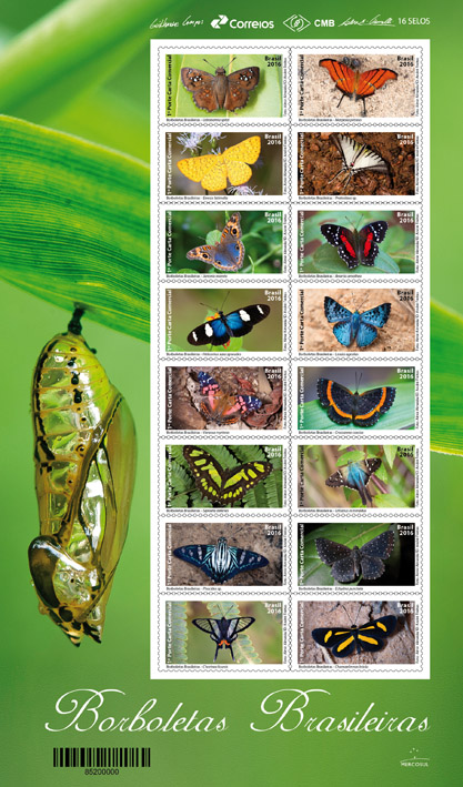 folha_borboletas